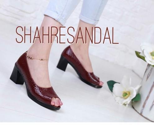 IMG 20190306 062316 426 495x400 - خرید کفش rocco