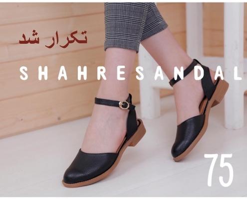 IMG 20190426 112057 832 495x400 - آشنایی با نکات مربوط به خرید کفش صندل مردانه