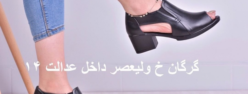 IMG 20190516 094318 495 845x321 - خرید کفش جدید زنانه